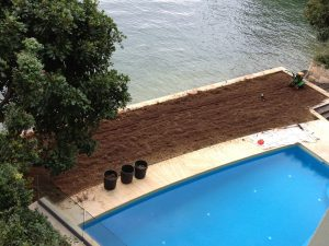 turf laying eastern suburbs